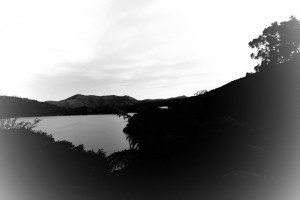 View in BW