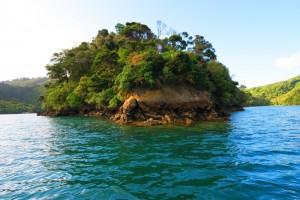 Bay in Marlborough Sounds