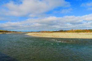 Ashley River